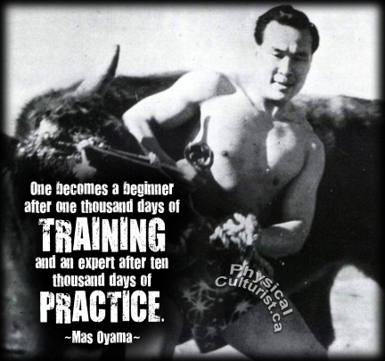mas-oyama-quote-beginner-to-expert-through-training-and-practice